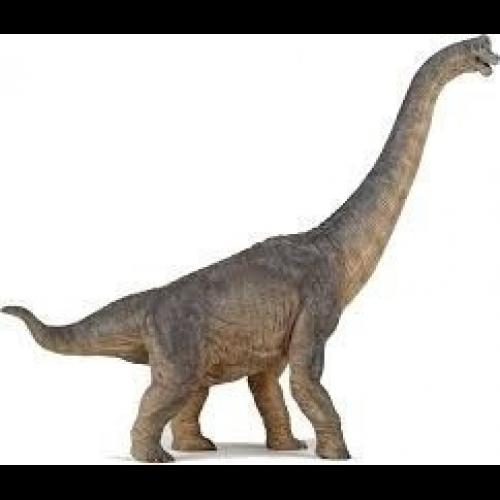 Esqueleto Juguete Dinosaurio Madera Braquiosaurus Armable U S 4 99 Según el modelo 12 piezas aproximadamente. esqueleto juguete dinosaurio madera